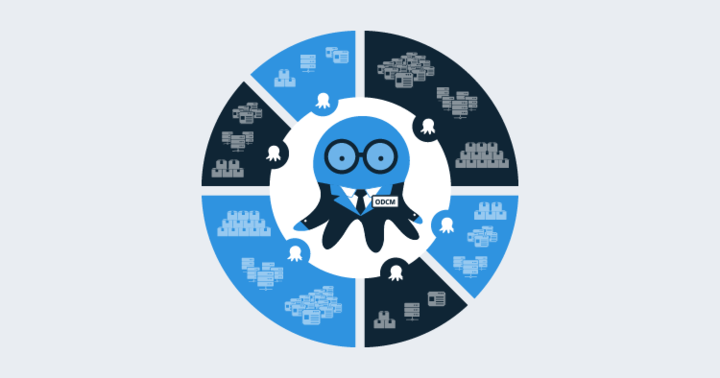 Managing Spaces with Octopus Data Center Manager RFC