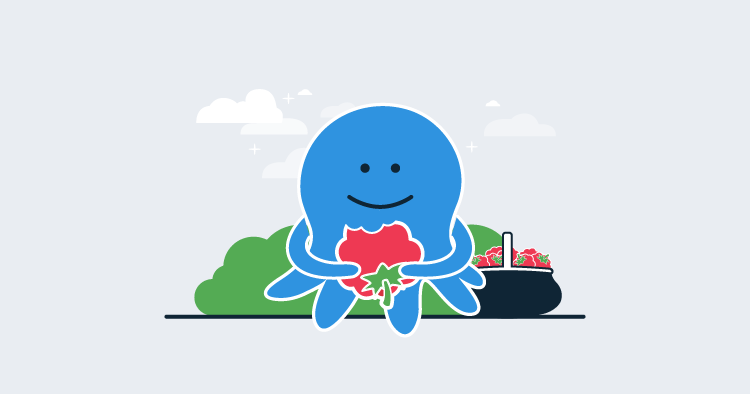 Octopus enjoying a Raspberry Pi