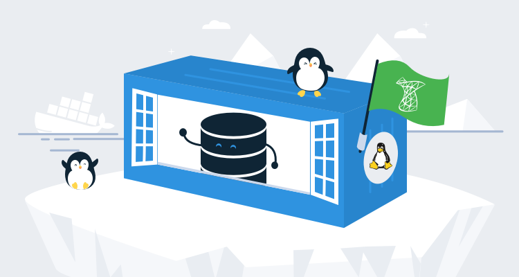 Running SQL Server Developer in a Linux-based Docker Container