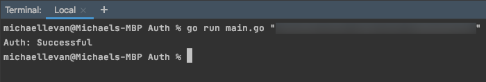 Terminal output showing authentication was successful