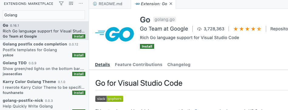 Go extensions in Codespaces