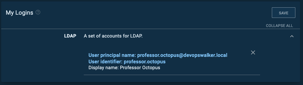 user principal vs user id
