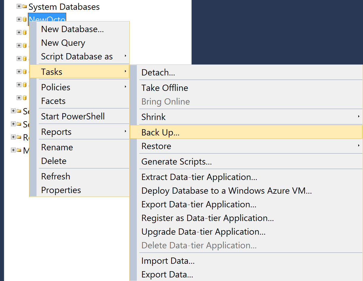 Backup SQL database in SQL Server Management Studio